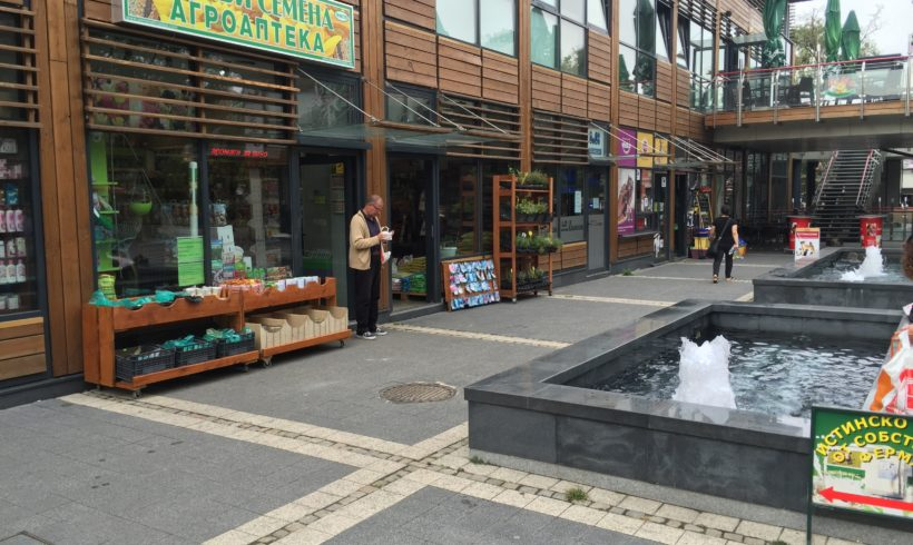 сортови семена софия женски пазар