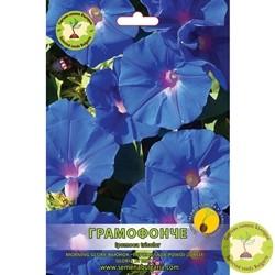 семена грамофонче синьо