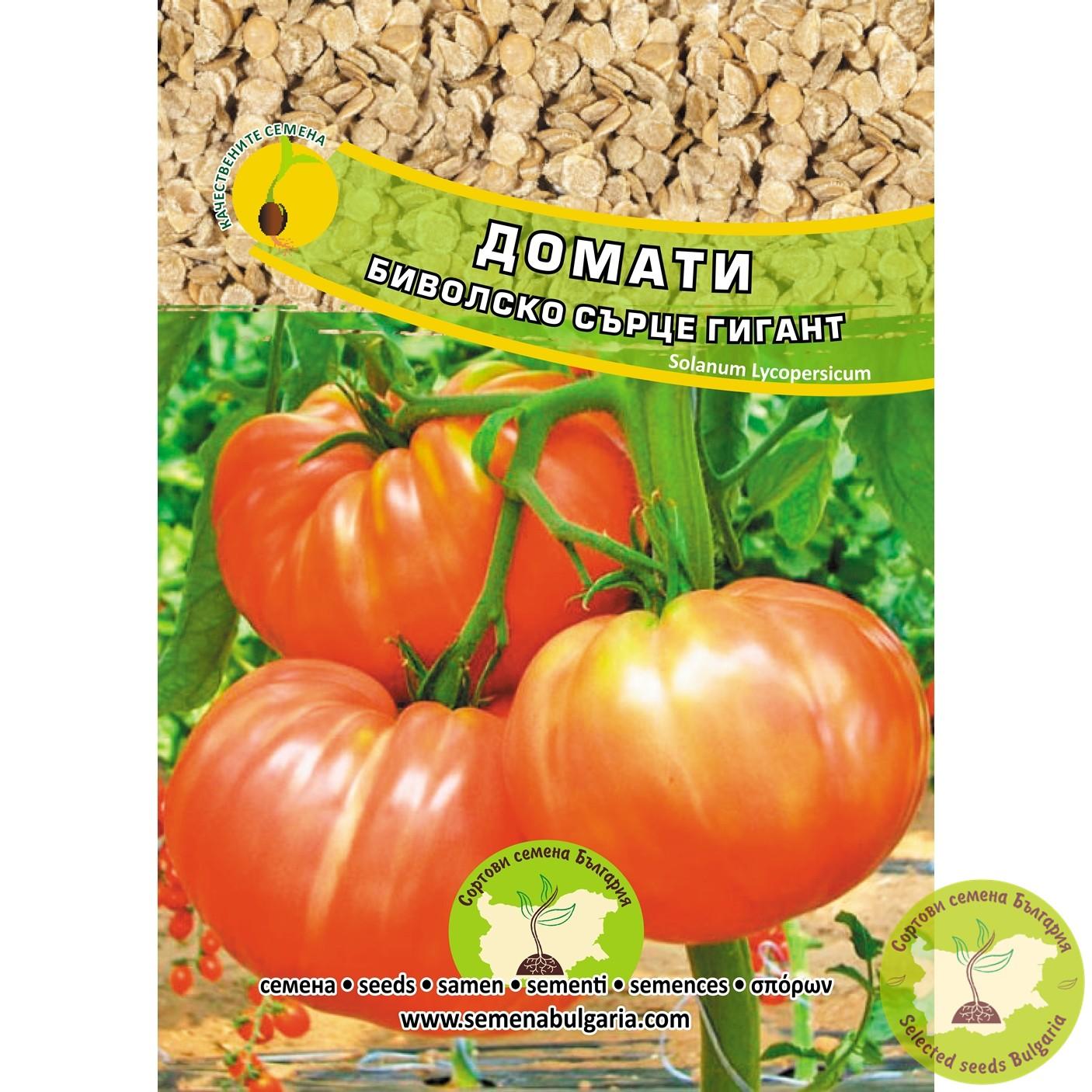 Семена домати Биволско сърце гигант
