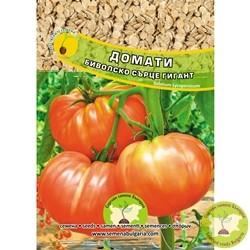 семена домати биволско сърце