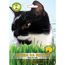 Треви за котки