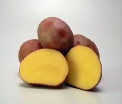 картофи лаура