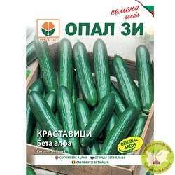 семена краставици бета алфа
