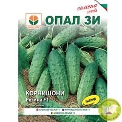 семена корнишони регина f1