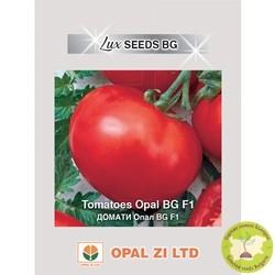 семена домати опал