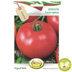 семена домати елена прима f1
