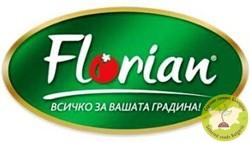 семена флориан